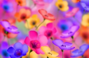 tlo-kolorowe-kwiaty-rozmyte
